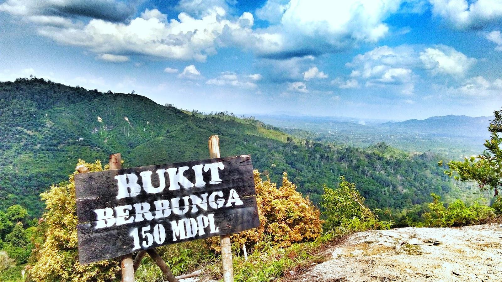 Indragiri Hulu Kabupaten Dengan Sejuta Keindahan Dan 10 Destinasi Wisata Terbaiknya Destinasi Travel Indonesia