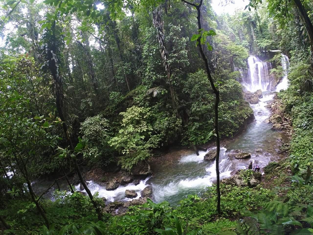 Suasana Traveling Hutan Amazon Ala Air Terjun Wabudori Supiori ...